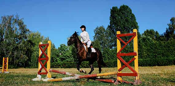 (Українська) Управляти конем, оздоровитися та прокачати внутрішню силу