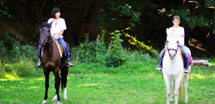 "First horse-riding course certificate program in ""Tempo"""