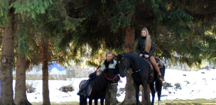 Про великих і маленьких коней