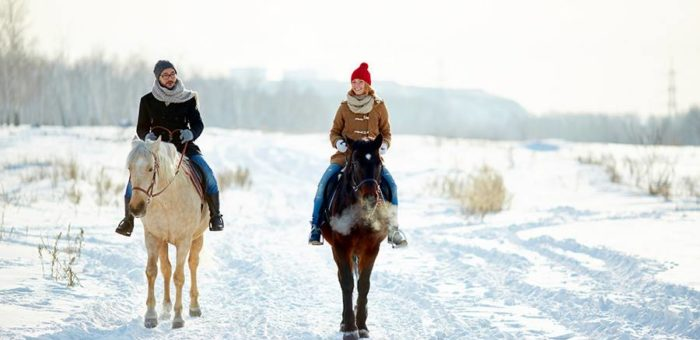 Why does horse ride in the forest stay as a heart-warming memory to you and your wife?