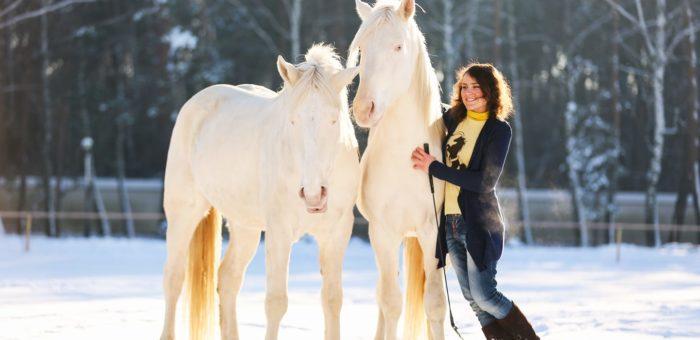 Правила поведінки на конюшні та біля коней