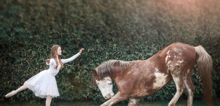 (Українська) Робота з інстинктами та мисленням коней