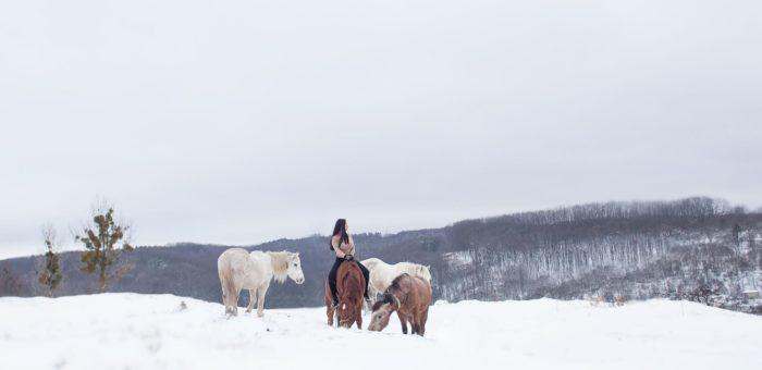 (Українська) Про одного з наших коней